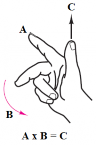 Pirate Image Hand Sign
