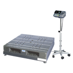 Pallet Integrated Digital Weighing Scale