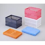 See-Through Color Collapsible Container