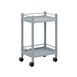 Mobile Storage Cart 2 Stages 540 x 370 x 841 (With Guard Frame And Handle)