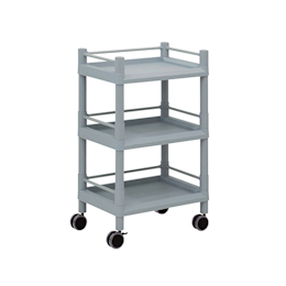 Mobile Storage Cart 3 Sages 540 x 370 x 875 (With Guard Frame And Handle)