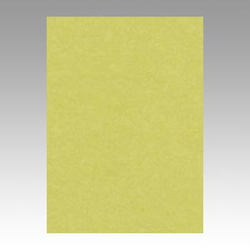 Color Drawing Paper, New Color, One-Quarter Willow