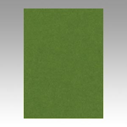Color Drawing Paper, New Color, One-Quarter Olive