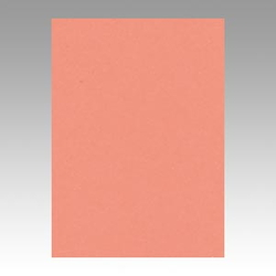 Color Drawing Paper, New Color, One-Quarter Salmon