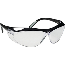 Jackson Safety Twin Lens Safety Glasses V20 Envision