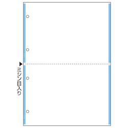 Multi Printer Slips A4 Carbonless 2 Slips/Sheet 4 Holes Blue Line