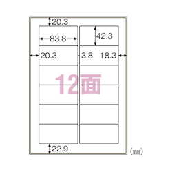 Label for Outdoor Use Oil Surface Compatible A4 12 Pieces Includes 10 Sheets