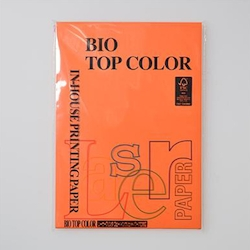 BIO Top Color Paper A4 100 Sheets 80 g/m² Orange