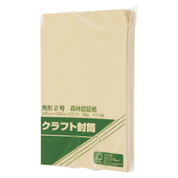 Forestry Certified Paper Envelopes, 85 g, 240 x 332 mm, 100 Sheets
