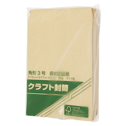 Forestry Certified Paper Envelopes, 85 g, 216 x 277 mm, 100 Sheets