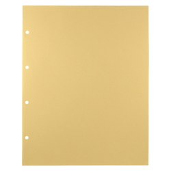 Deluxe Transparent Pocket Standards: B4 Portrait Number of Holes: 2, 4 External Dimensions: Length 369 X Width 290 mm