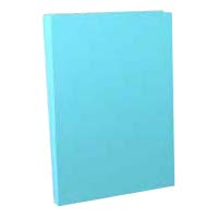 A-NER File B5 Size Vertical (Cheap Edition)(Back Width 10 to 110 mm), 2 Holes, Blue