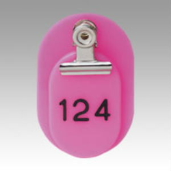 Parent/Child Tags, Continuous Numbers 101-150 Pink