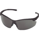 Twin-Lens Safety Glasses TSG-9146