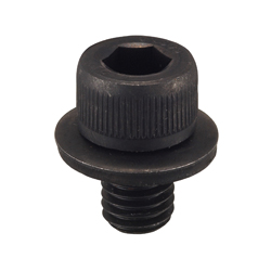 GT Cap Bolt (GT-LA Type)