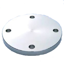 Stainless Steel Pipe Flange SUS F304 Water Supply Flange WBF F12