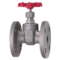 Stainless Steel General-Purpose 10K Gate Valve Flange (Kitz)