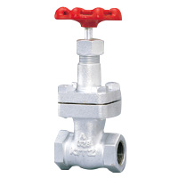 General Purpose Ductile Iron 20K Gate Valve Screw-in (Kitz)