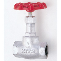 General Purpose Ductile Iron 10K Globe Valve Screw-in