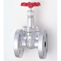 General Purpose Ductile Iron 10K Gate Valve Flange