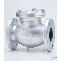 General Purpose Ductile Iron 10K Swing Check Valve Flange