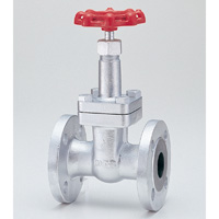General Purpose Ductile Iron 20K Gate Valve Flange