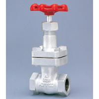 General Purpose Ductile Iron 20K Gate Valve Screw-in