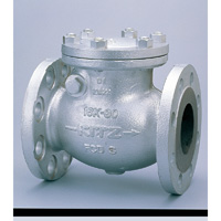 General Purpose Ductile Iron 16K Swing Check Valve Flange