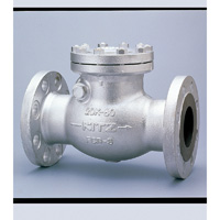 General Purpose Ductile Iron 20K Swing Check Valve Flange
