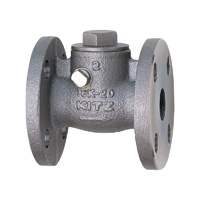 Stainless Steel General-Purpose 10K Swing Check (SCS13A) Valve Flange
