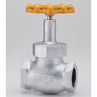 Ductile Iron 20K Globe Valve for LP Gas, Screw Type
