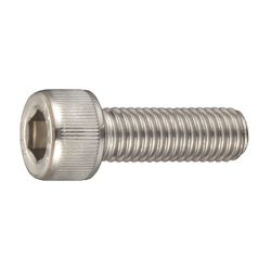 Stainless Steel Bolt with Hexagonal Socket Head