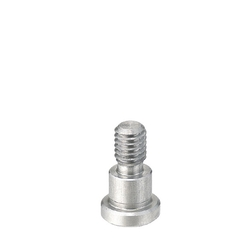 Bearing Shaft Screws - Configurable Length, Bolt Type