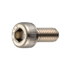 Hex Socket Head Cap Screw (Electroless Nickel Plating) - SNS-EL