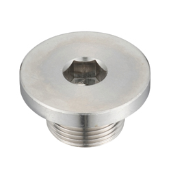 Flanged Hex Socket Head Screw Plug, SFM