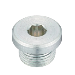 Flanged Hex Socket Head Screw Plug, SPN-L