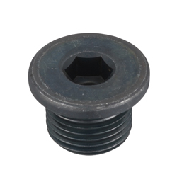 Flanged Hex Socket Head Screw Plug, SFF