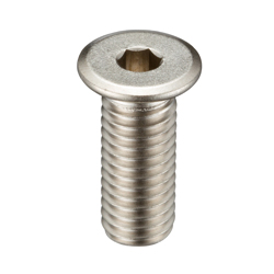 Hexagonal Socket Ultra Low Head Bolt - SSH/SSHS