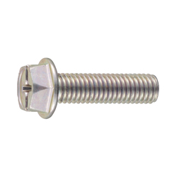 Cross-Recessed/Slotted Hexagon Flange Screw
