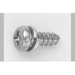 Tap-Tight B Type Pan Screw P=2 (SW)