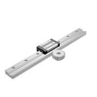 Linear Guide Rail with Rack Gear Set
