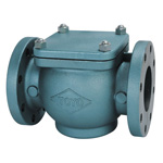 Cast Iron Straight Type Flanged Strainer