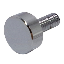 Decorative Screw